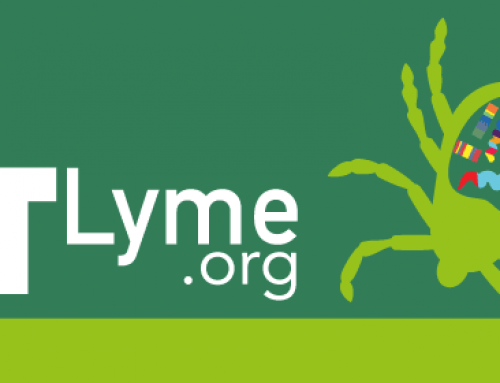 8 Things You Should Know About Lyme Disease in Vermont