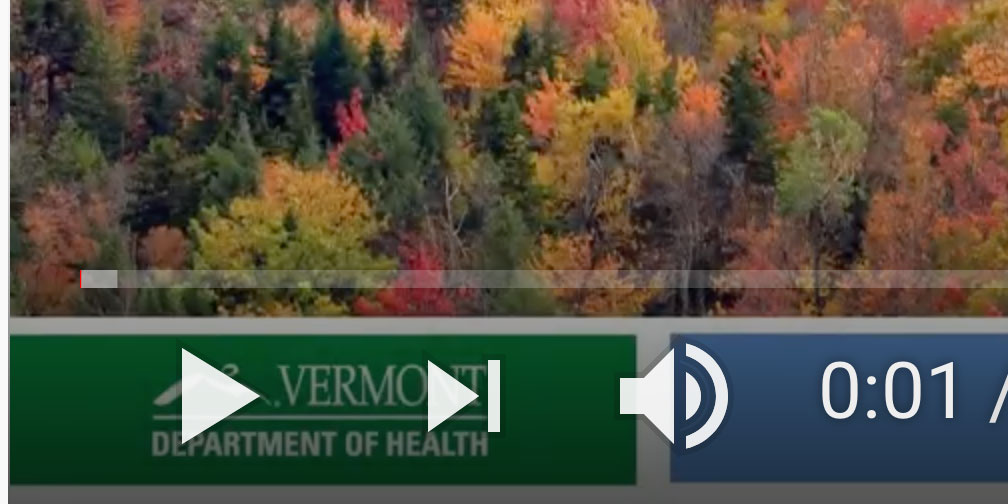Image of the vdh presentation from YouTube